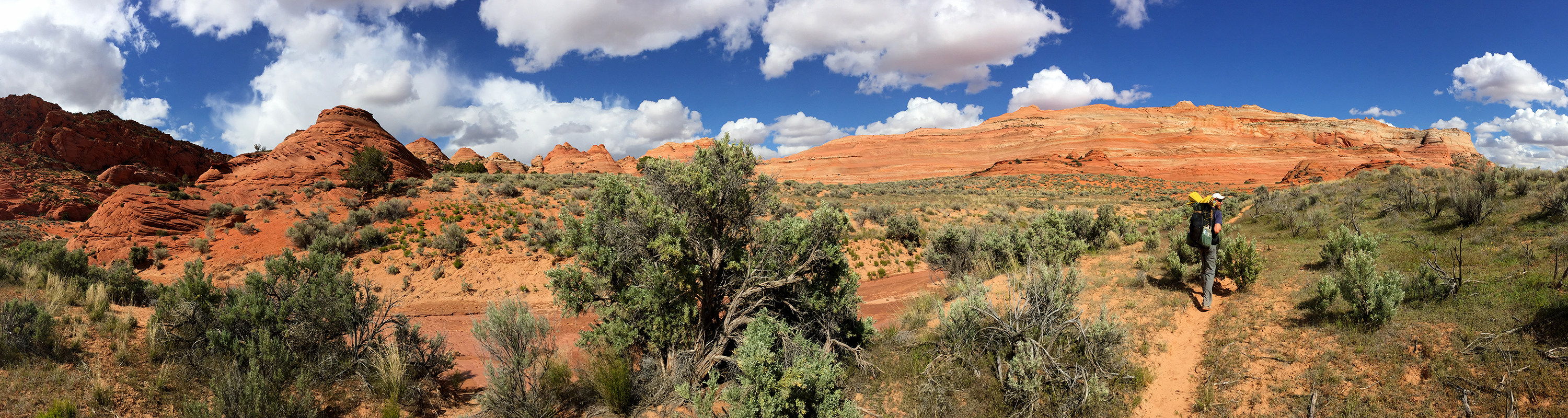 coyote buttes wire pass