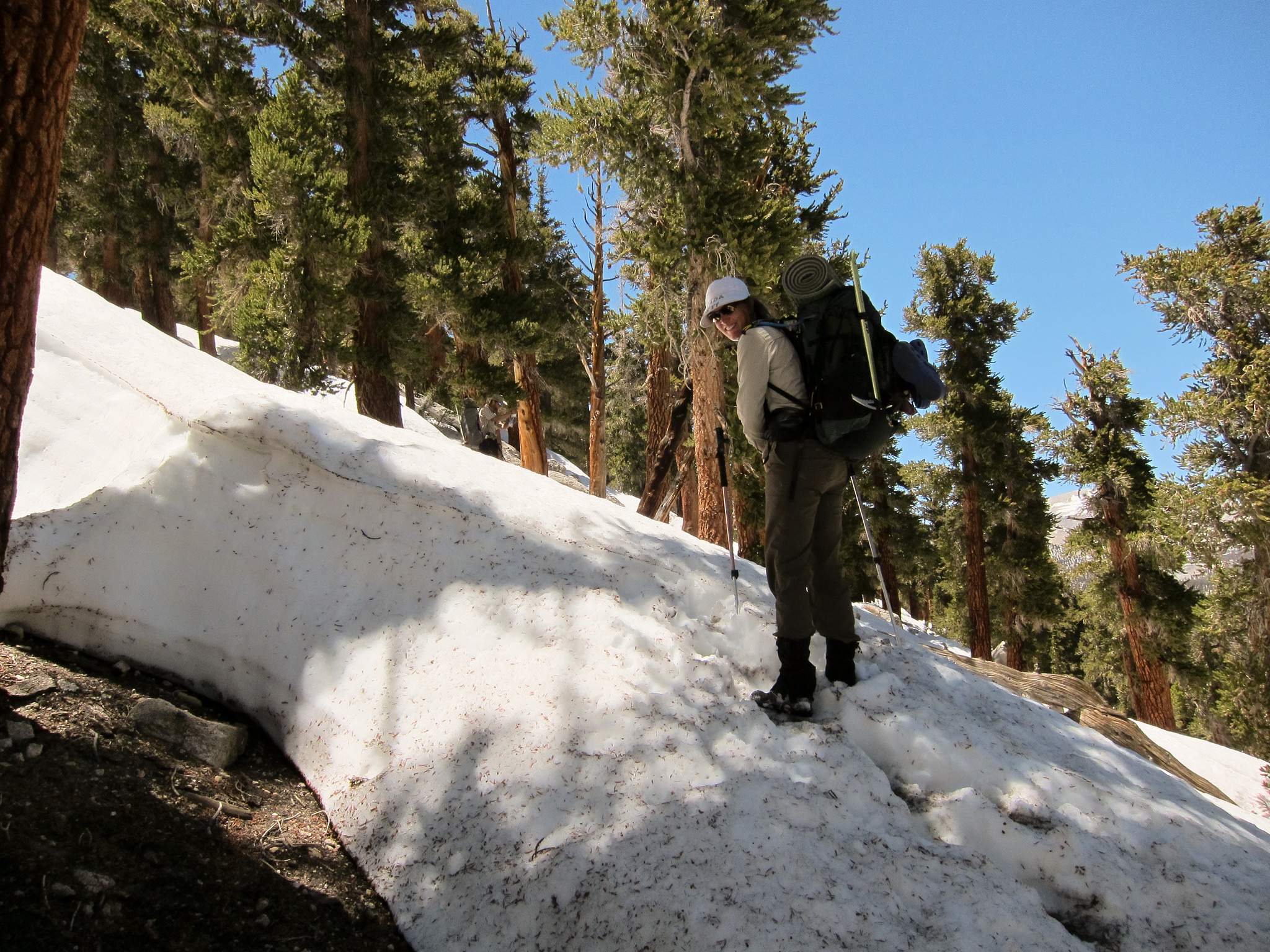 snow starts just after trail pass sierra