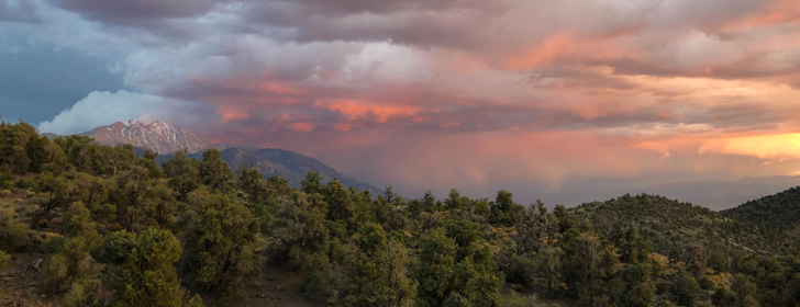 lightning storm over boundary peak. red clouds, pinyon trees in foreground